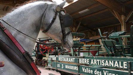 Musée du cheval de trait
