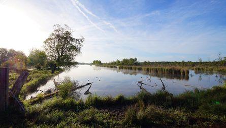 Les Marais de Sacy