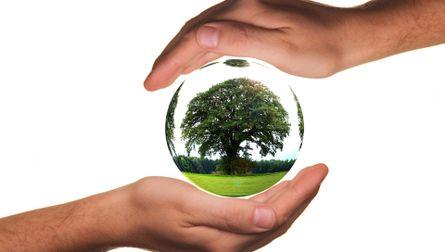 ANNULEE : De la biodiversité au biomimétisme en forêt d'Halatte